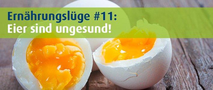 Header BasenCitrate Pur Ernährungslüge Eier sind ungesund